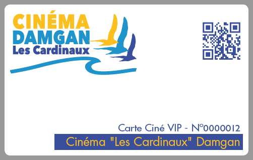 Carte-VIP-abonnement-cinema-Damgan