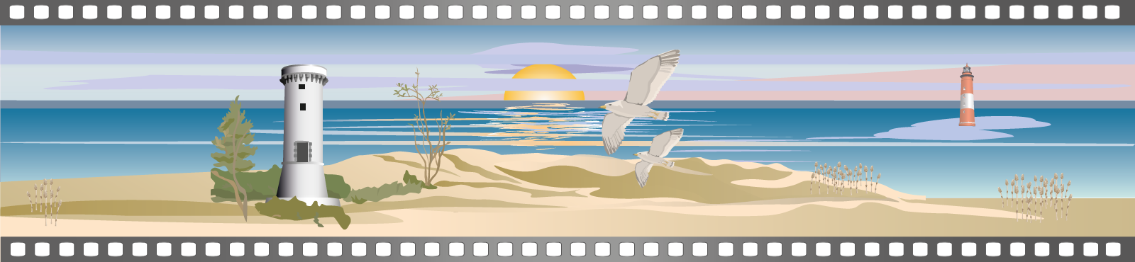 banniere-Film-plage-phare-tour-cinema-damgan-1008x370pxl
